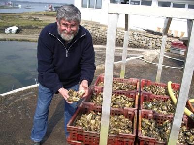 Tibidy Huîtres à Carnac