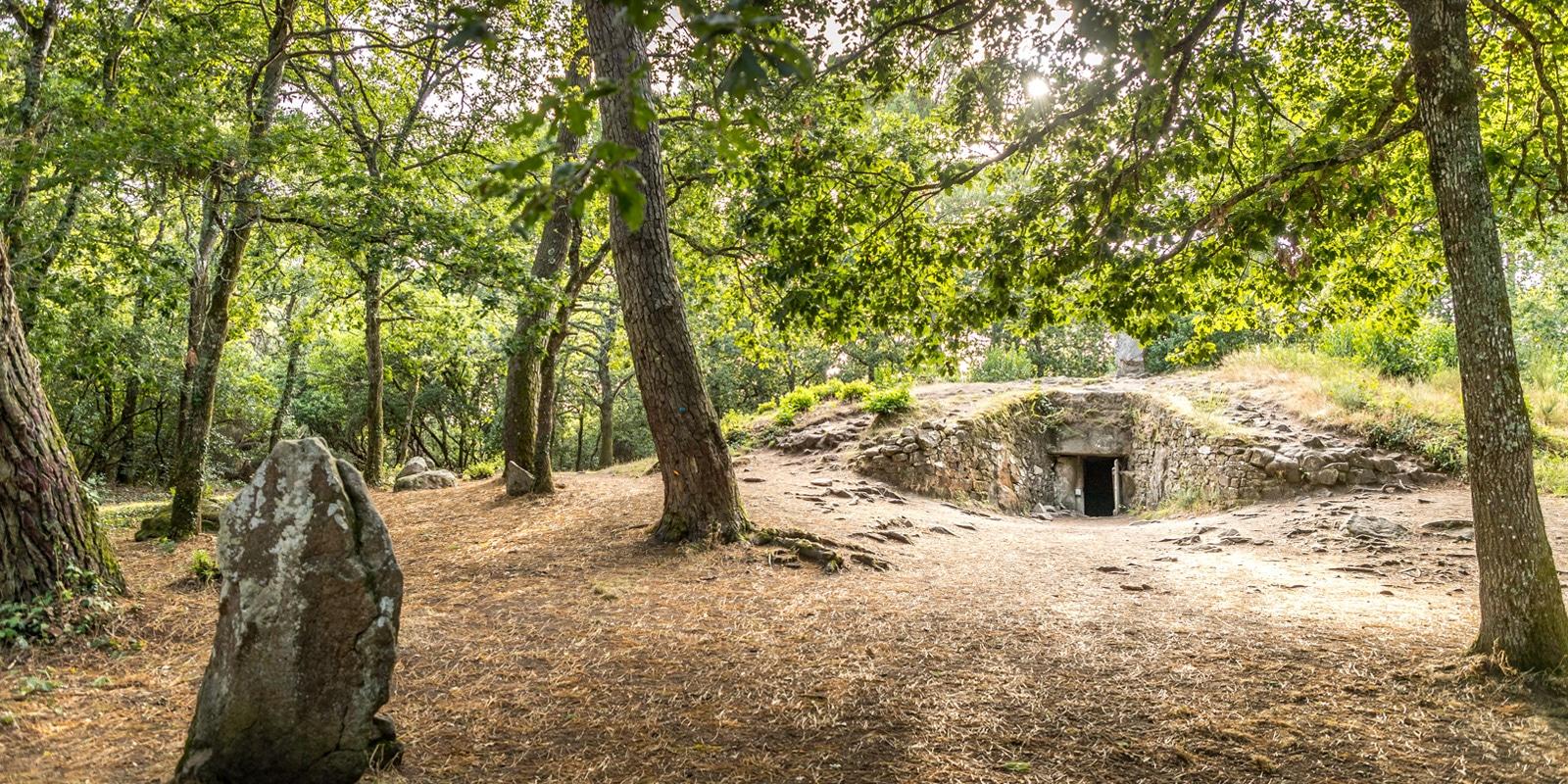 Comprendre le mégalithisme à Carnac