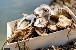 Les huîtres de l'Anse du Pô à Carnac