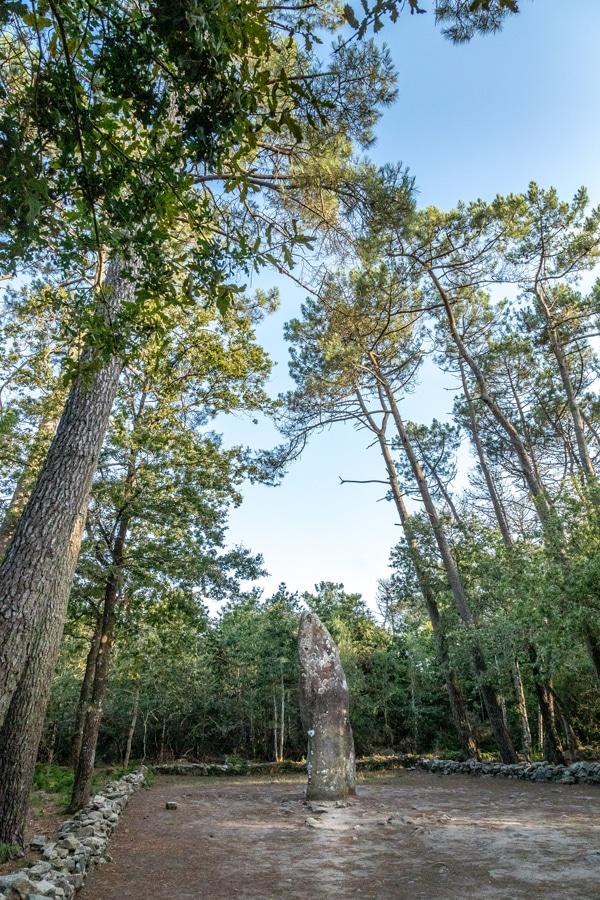 Le plus grand menhir de Carnac : le Géant du Manio entouré d'arbres