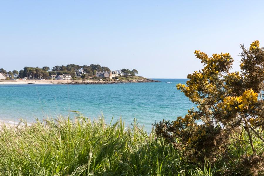 Vue fleurie sur la mer à Carnac